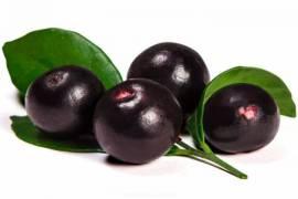 Acai Berry Çayı Nedir, Faydaları Nelerdir?