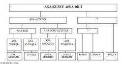 Altay Dil Teorisi, Bu Teoriye Karşı Çıkan Araştırmalar ve Dayanakları