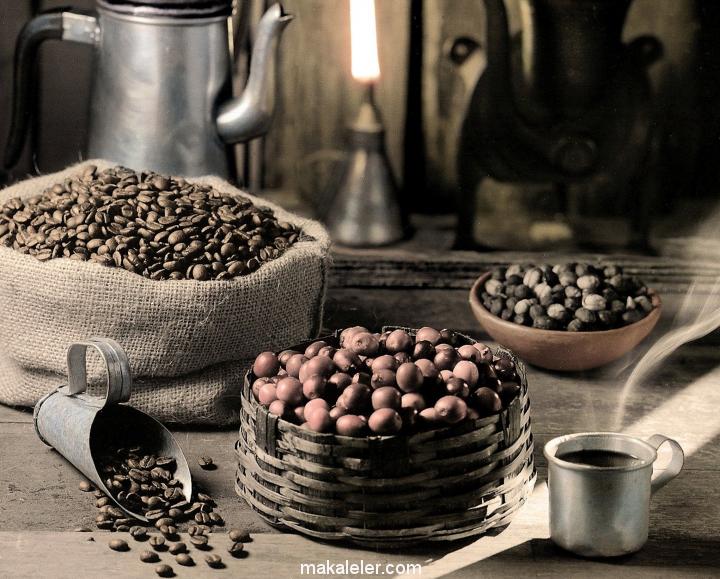 Brezilya Kahvesi Nedir, Özellikleri Nelerdir?