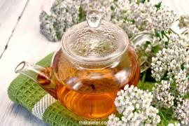 Civanperçemi Çayı Nedir, Faydaları Nelerdir?