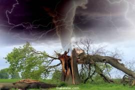 Doğal Afet Nedir, Çeşitleri Nelerdir?