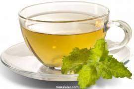 Tulsi Çayı Nedir, Faydaları Nelerdir, Nasıl Hazırlanır?