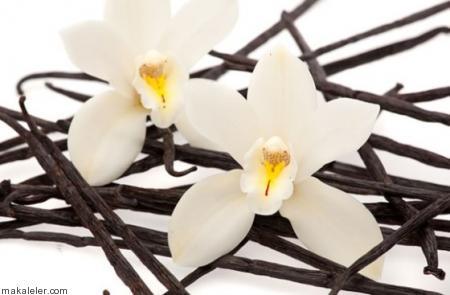 Vanilya Çubuğu Nasıl Kullanılır?
